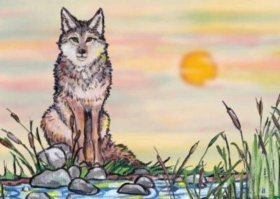 Coyote's Food Medicines